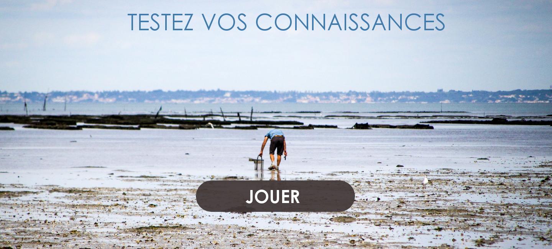 Le quizz des grandes marées en Bretagne
